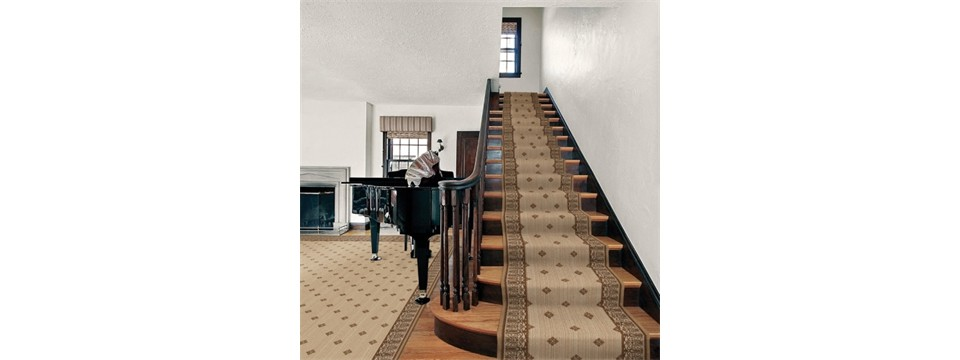 stanton carpet stairs and area rug